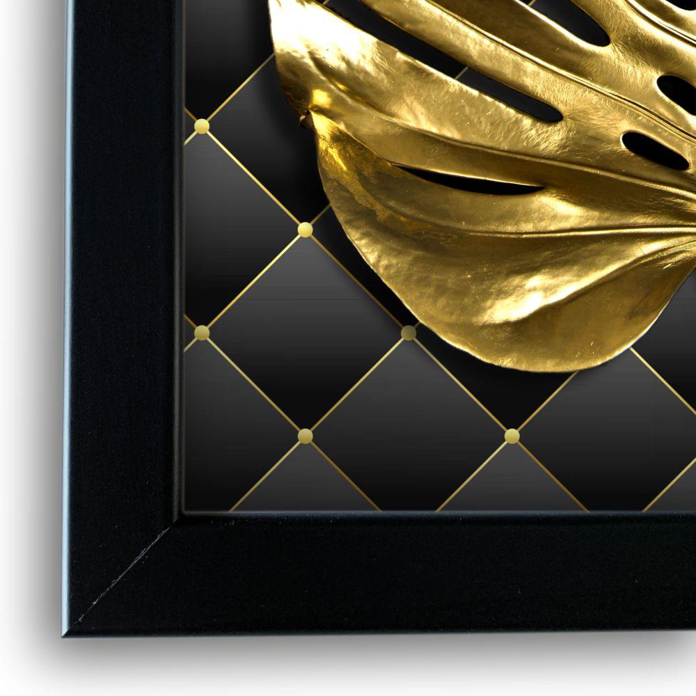 Monstera Gold rama