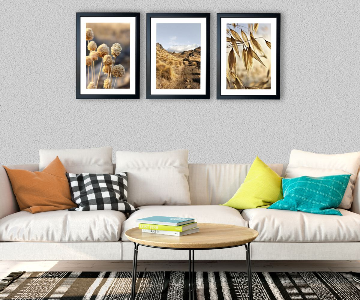 góska flora nad stylową kanapą