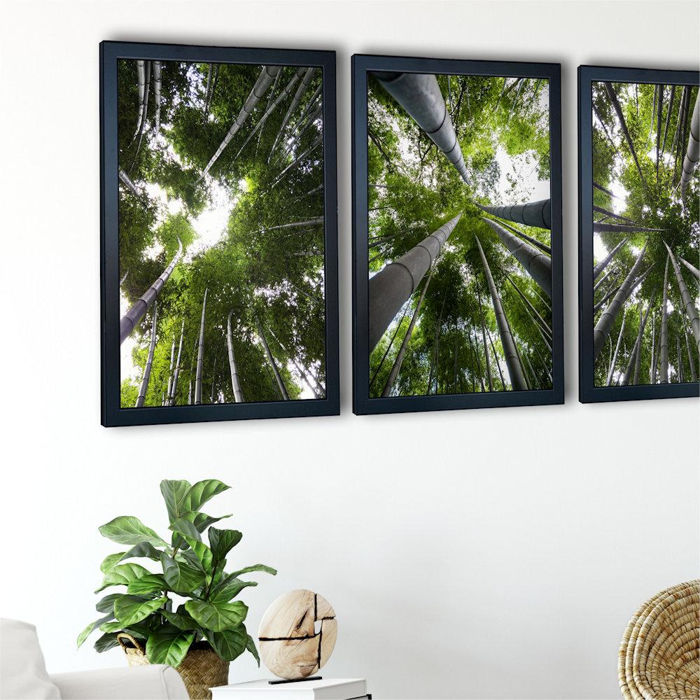 Obraz las bambusowy na ścianie zbliżenie