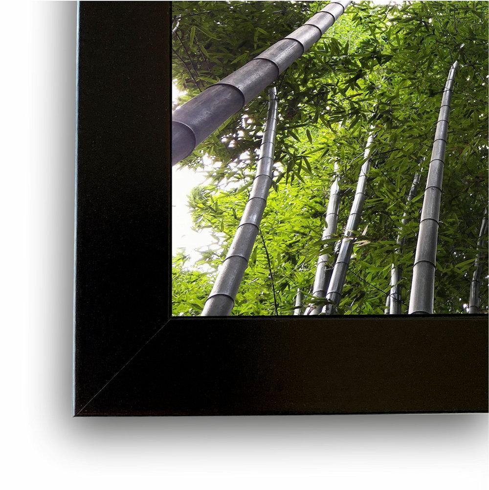 Obraz las bambusowy zbliżenie