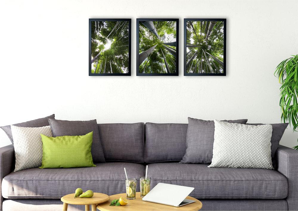 Obrazy las bambusowy nad kanapą