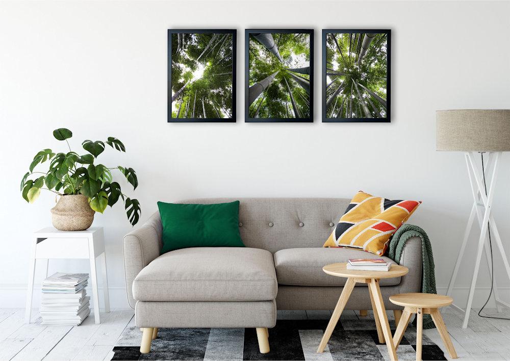las bambusowy nad stylową kanapą