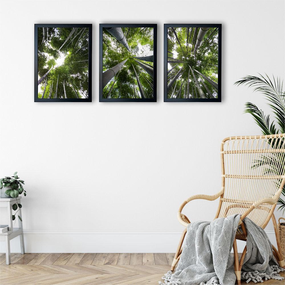 Obraz las bambusowy na białej ścianie