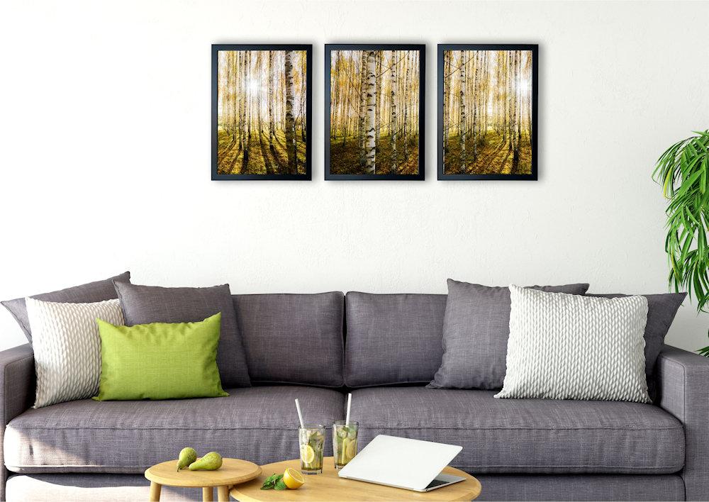 las brzozowy nad kanapą