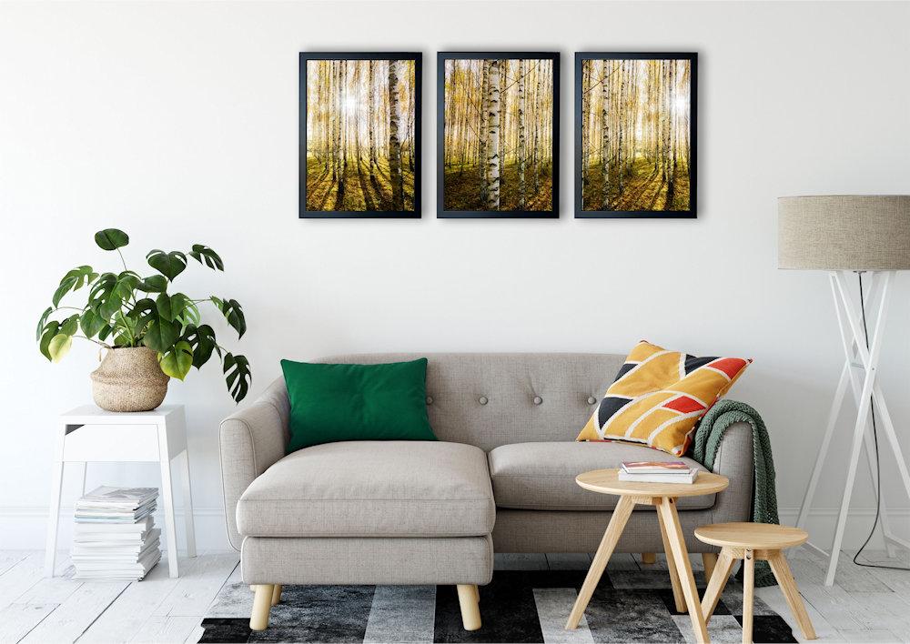 las brzozowy nad stylową kanapą pod kątem