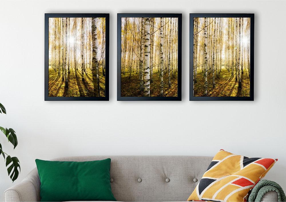las brzozowy zbliżenie