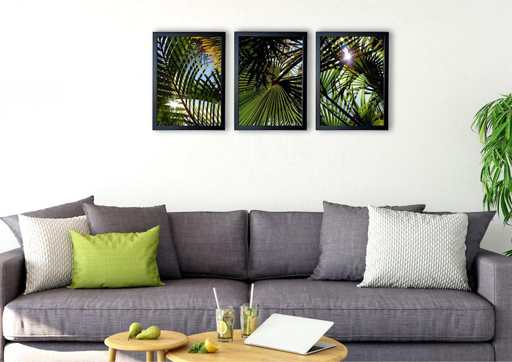 liście palmowe nad kanapą