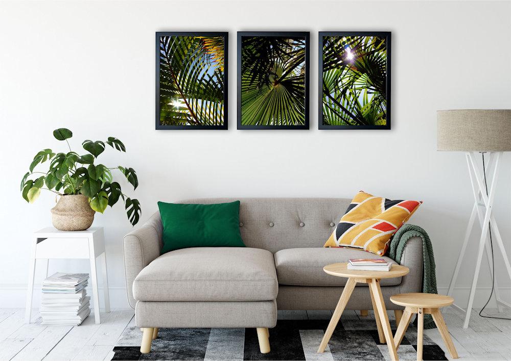 liscie palm zbliżenie