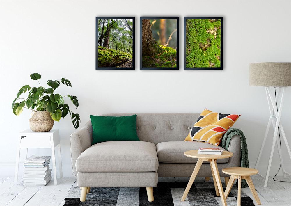 fotografia mchu nad stylową kanapą pod kątem