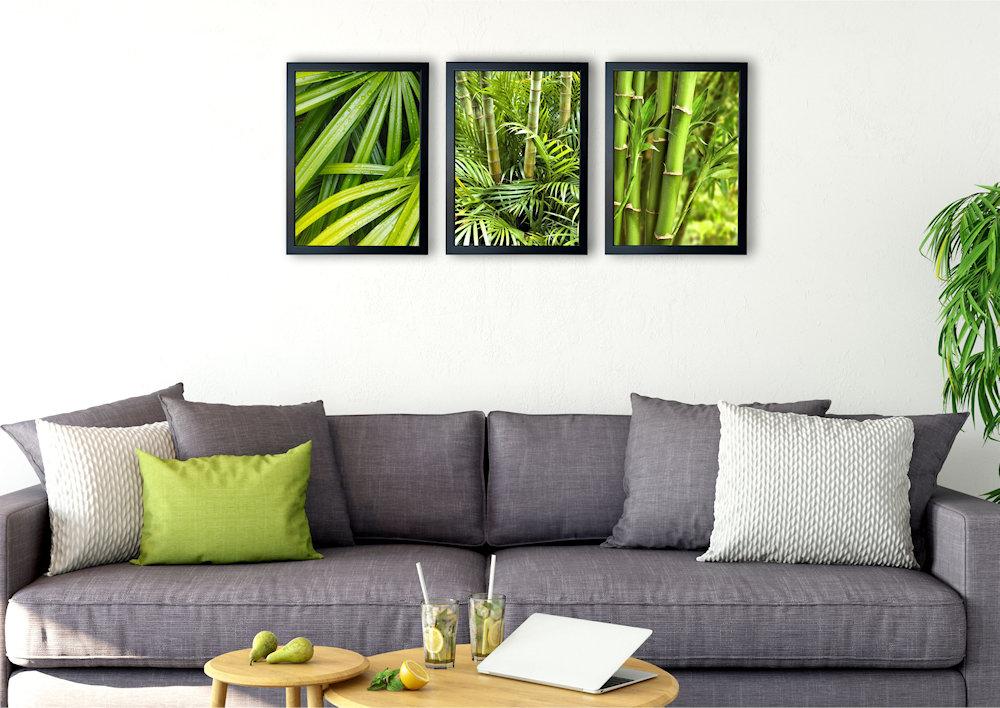 zielone bambusy nad kanapą