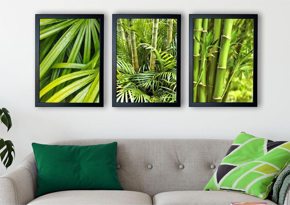 zielone bambusy zbliżenie